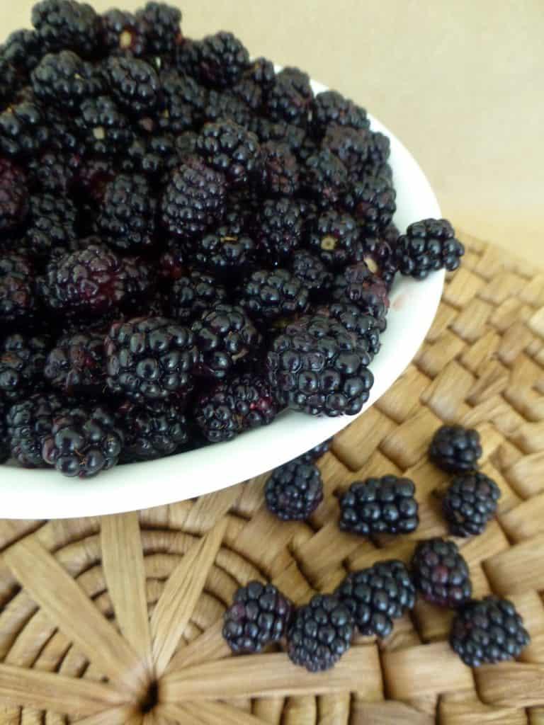 native Florida blackberries