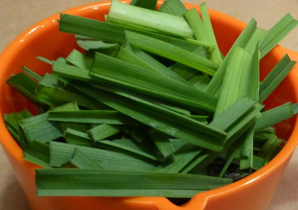 preparing plants for dyeing