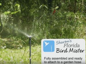 Birds in Sharon's Florida Bird Mister