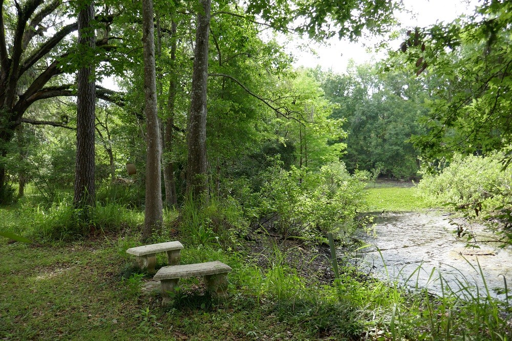 concrete benches next to a natural pond