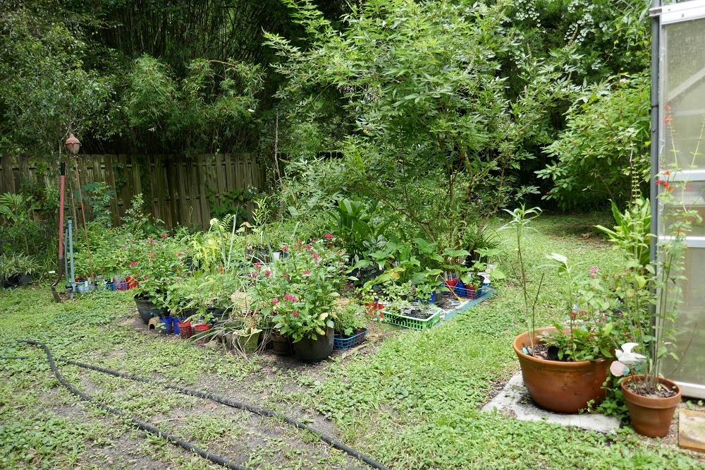 recycle area rugs in your garden
