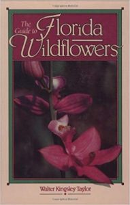 The book cover for The Guide to Florida Wildflowers by Walter Taylor.