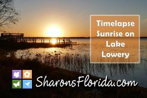 golden sunrise youtube video of a sunrise shot in timelapse