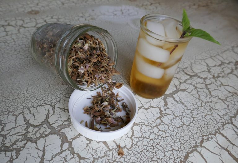 dotted horsemint tea (Monarda punctata) in a glass with ice
