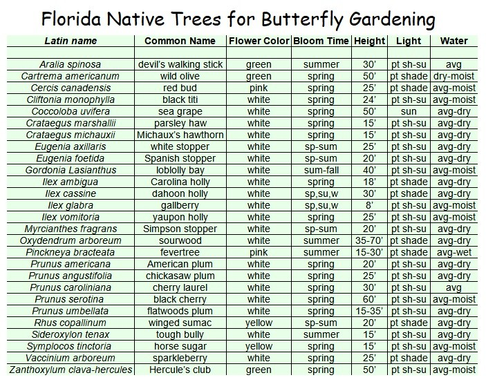 chart of native Florida trees for butterfly gardening