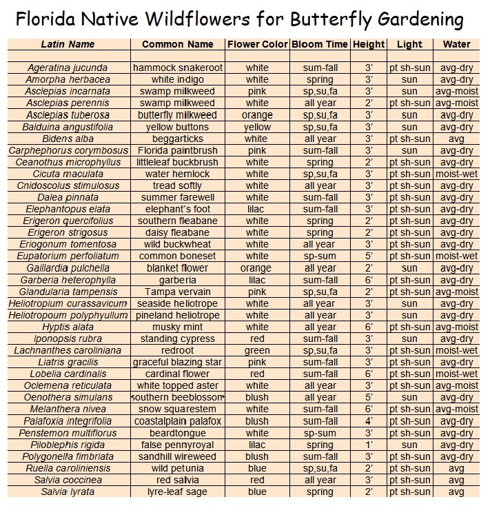 chart of Florida wildflowers for butterfly gardening