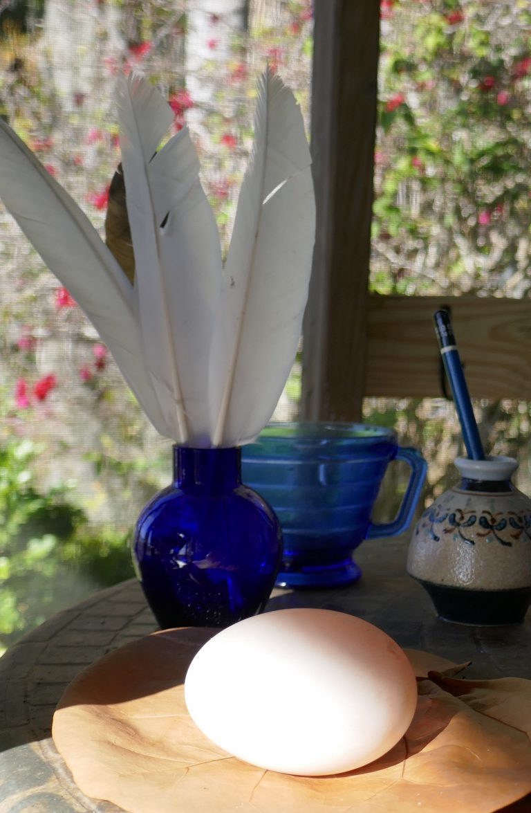 a Pekin duck egg on a table with a blue vase of duck feathers