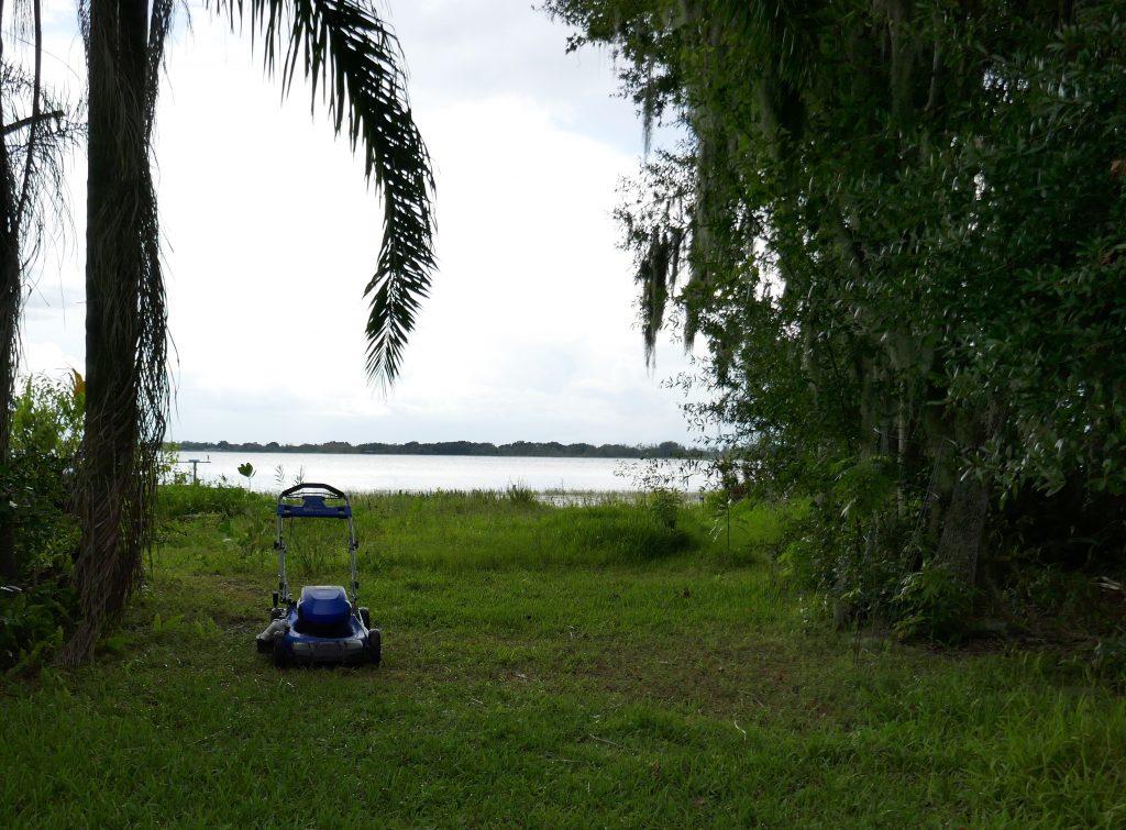backyard facing the lake