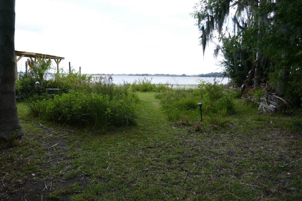 garden path facing a lake